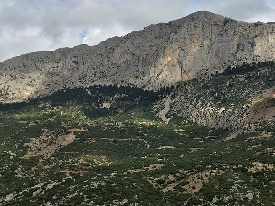 Mount Parnassus Delphi All You Need to Know BEFORE You Go