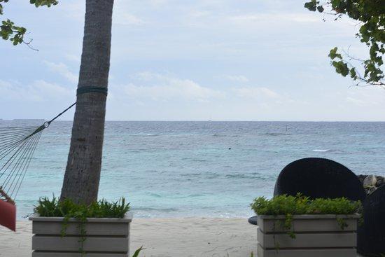 漢巴杜島照片