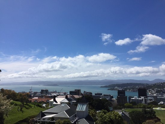 Wellington City Walkways: photo3.jpg