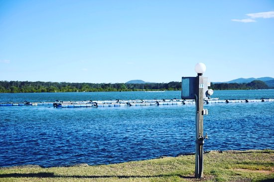 Nambucca Heads, Australien: Riverfront Powered Site 79