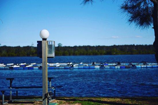 Nambucca Heads, Australien: Riverfront Powered Site 82 + 83