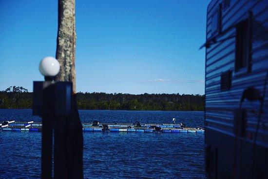 Nambucca Heads, Australien: Waterfront powered site