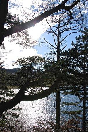 Revel, Francia: le lac vu à travers des arbres du parc de Saint-Ferréol