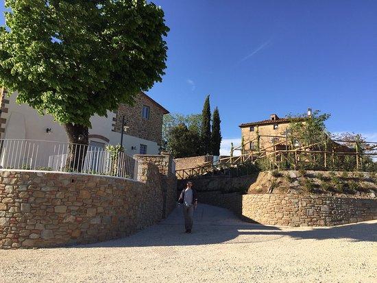 Lamporecchio, İtalya: Stefano nella sua azienda agricola