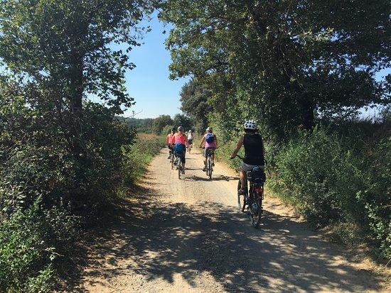 Madremanya, İspanya: Nice paths! and nice countryside!