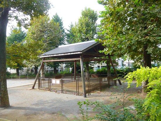 Shibuya Hikawa Shrine