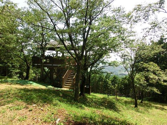 Mori-machi, Japón: 山頂の展望台