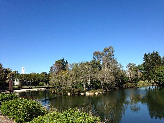 Benowa, Αυστραλία: photo1.jpg