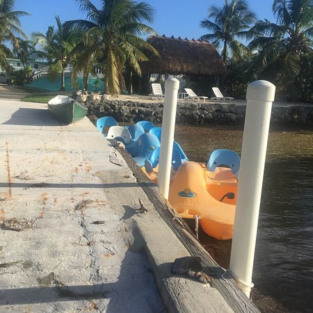 Gulf View Waterfront Resort: photo1.jpg