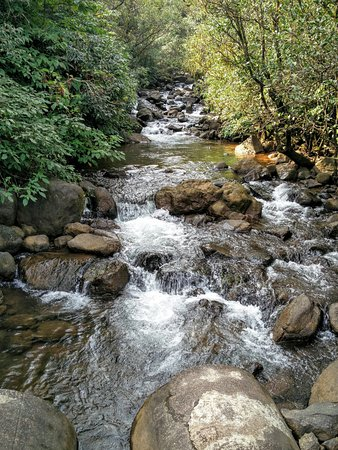Bhimashankar, Hindistan: On the way to Kondhawal falls 1