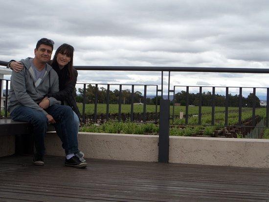 Maipu, الأرجنتين: vista de viñedo desde la terraza