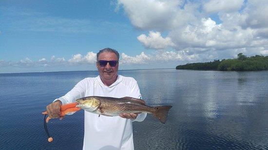 Punta Gorda, FL: RedFish