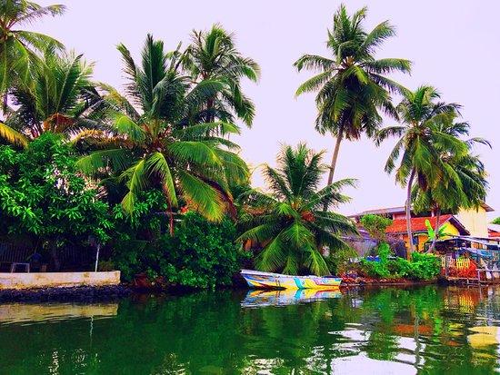Bentota, Sri Lanka : photo0.jpg