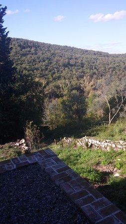 Ricavo Φωτογραφία