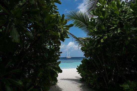 Atollo North Ari Photo