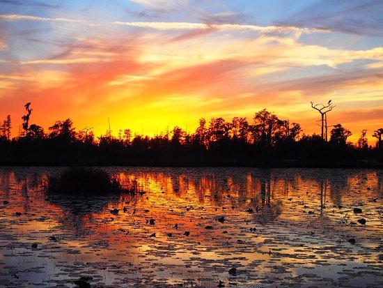 Folkston, GA: Sunset over Okefenokee