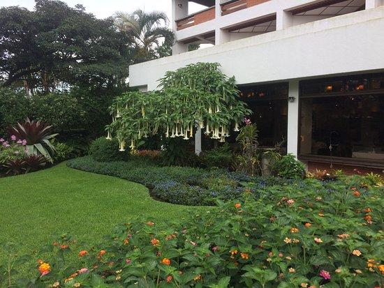 Santo Domingo de Heredia, Costa Rica: Beautiful and interesting well-kept gardens.