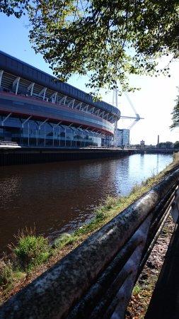 Flat 5 Cardiff: DSC_2092_large.jpg