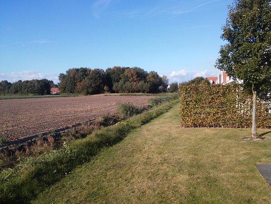Bruinisse, The Netherlands: Hinter dem Haus