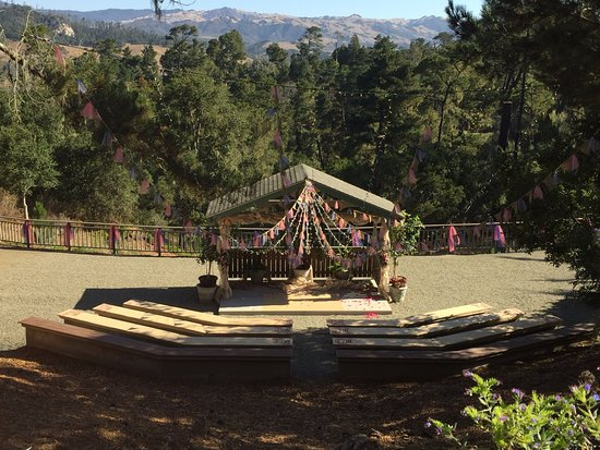 Cambria Pines Lodge: The Amphitheater where we had our ceremony.