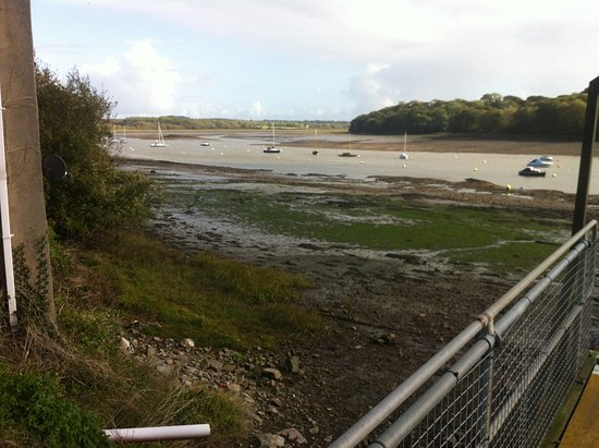 Lawrenny Arms: View from Pontoon across the River at low tide.