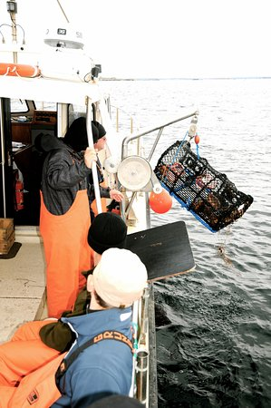 Hönö, Sverige: Lobster fishing in autumn