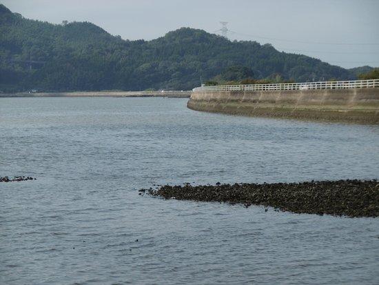 Imari Bay