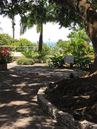 Montpelier Plantation & Beach: photo5.jpg
