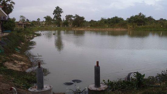 Freddie's Fishing Park