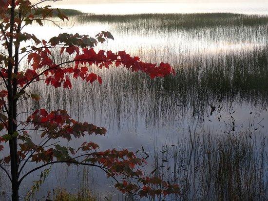 Zdjęcie Long Lake