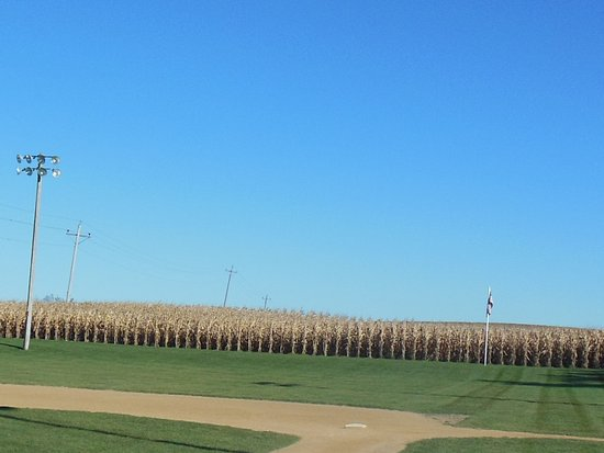 Dyersville, IA : Corn field - do you see the baseball ghosts?