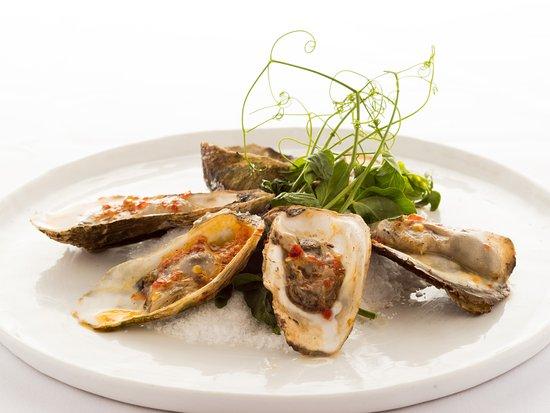 Johnson City, TN: Oysters.