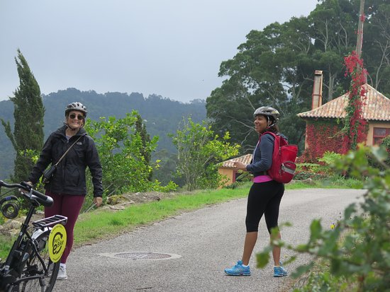 Cycling Rentals & Tours: Stopped for scenic photos along the way