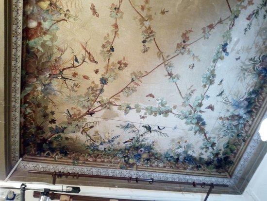 Vaprio d'Adda, Italia: Il soffitto affrescato di una sala