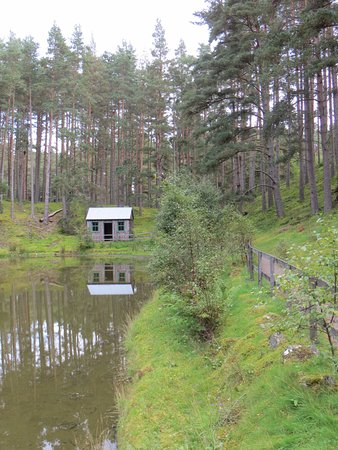 Newtonmore, UK: curling shack in the woods