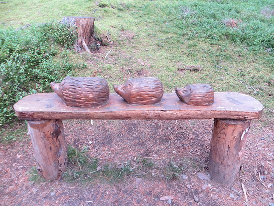 Newtonmore, UK: carving in the woods