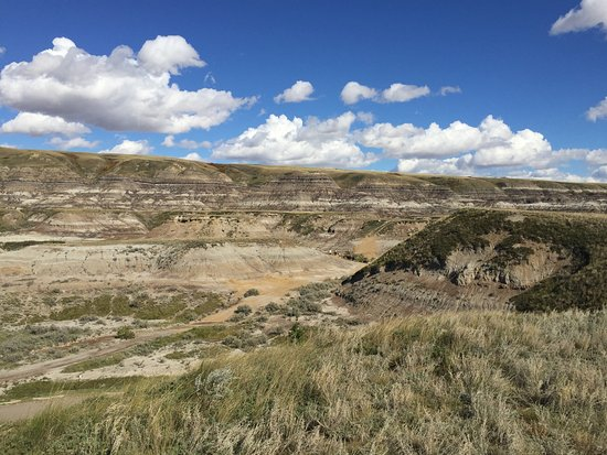 Royal Tyrrell Museum of Palaeontology: The view from the look-out area in front of the museum!