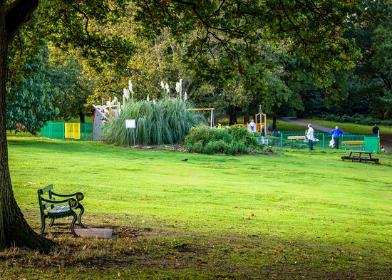 Acton Park: Swings and climbers for kids