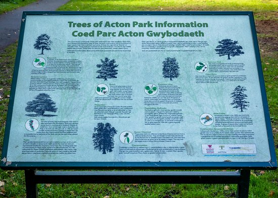 Acton Park: Information about trees