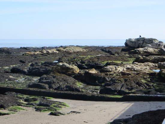 St Andrews Cathedral: view out to sea