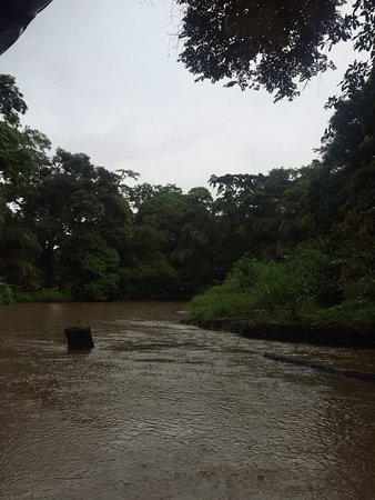 Tortuguero, Costa Rica: photo0.jpg