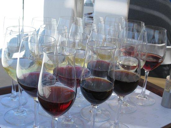 Pyrgos, Hellas: 18 Wine Flight
