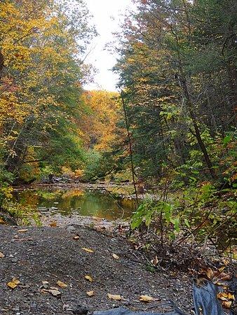 Nazareth, PA: fall hike along the river