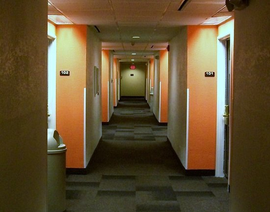 Arlington Heights, IL: spotless halls, usually very quiet. what's up with the circus orange walls?