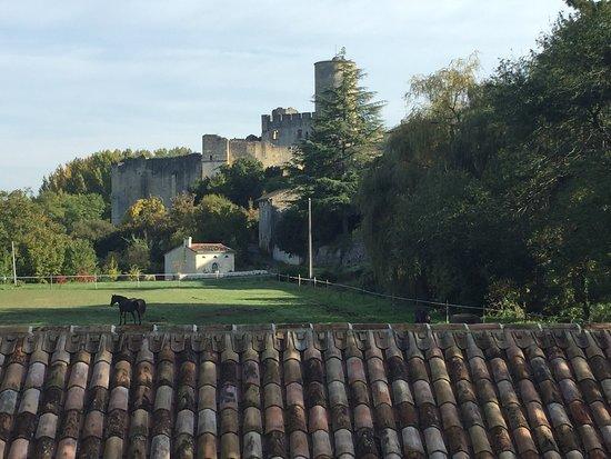 Rauzan, France: photo1.jpg
