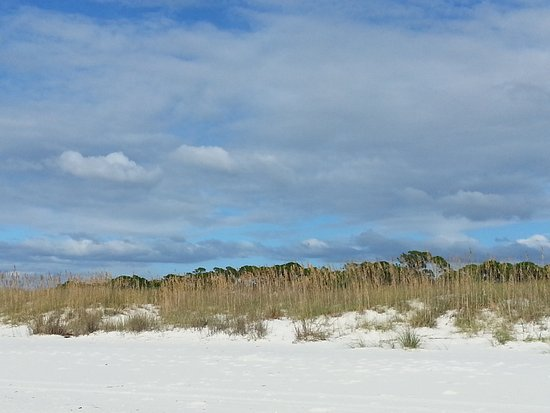 Port Saint Joe, FL: Sand dunes are between the beach and the camp ground
