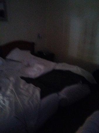 Hotel da Bolsa: Photo de la chambre à 9h le matin rideaux ouvert
