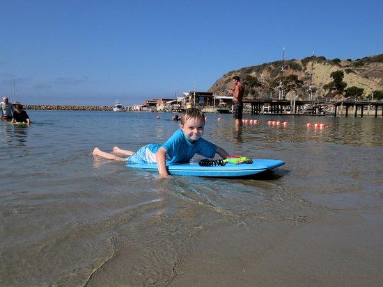 Dana Point, CA: Feeling safe in the big ocean!