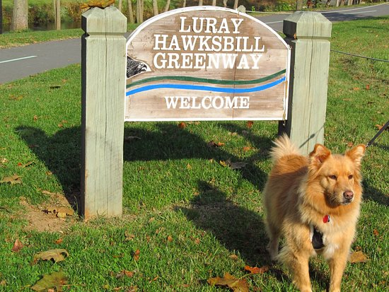 Hawksbill Greenway: Sunshine gives her stamp of approval