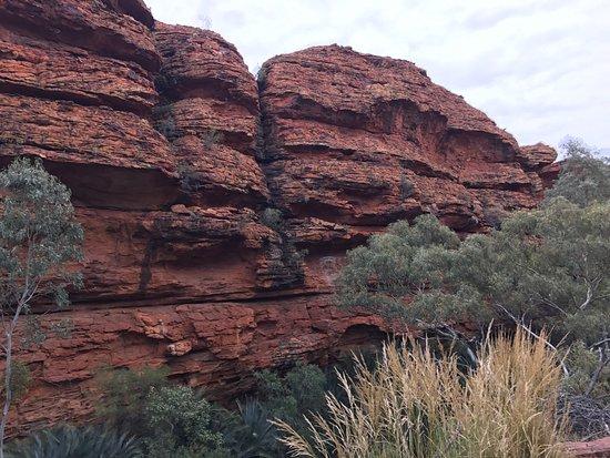 Yulara, Australië: photo7.jpg
